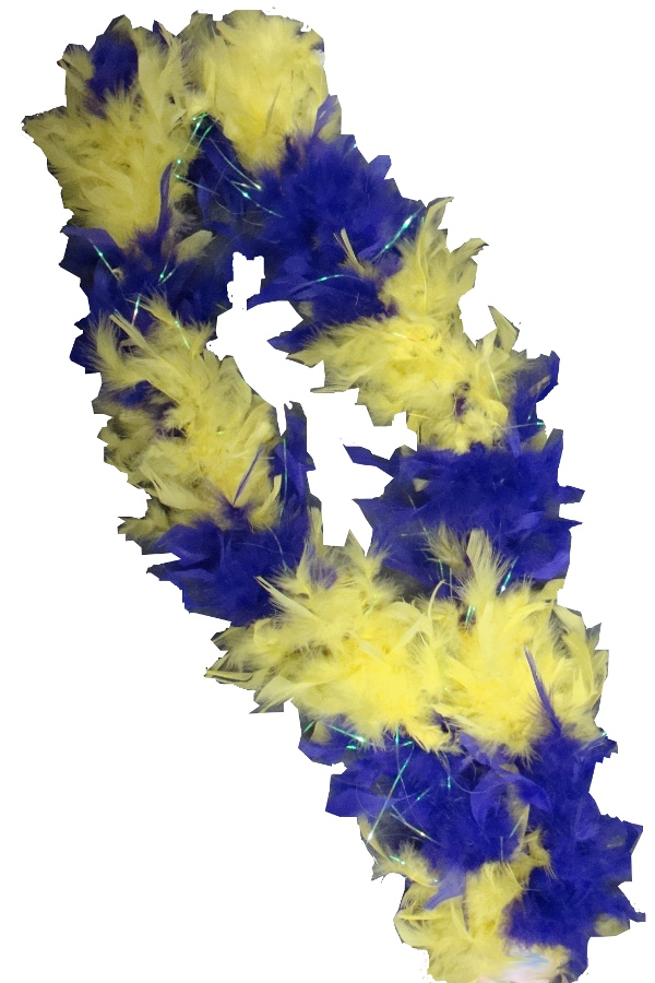 Purple and Gold Feather Boa